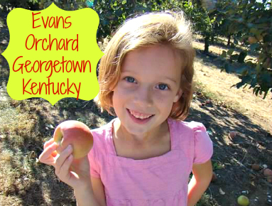 Evans Orchard