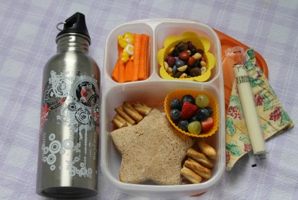 Lunch Packing Ideas