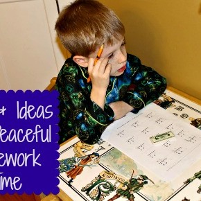 Tips & Ideas for Peaceful Homework Time