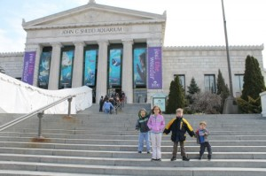 Shedd Aquarium in Chicago
