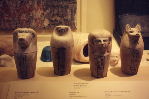 Field Museum Canopic Jars