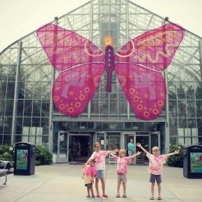 Eden Park & the Krohn Conservatory Butterfly Show
