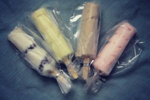 Kocanut Joe's Frozen Yogurt Pops