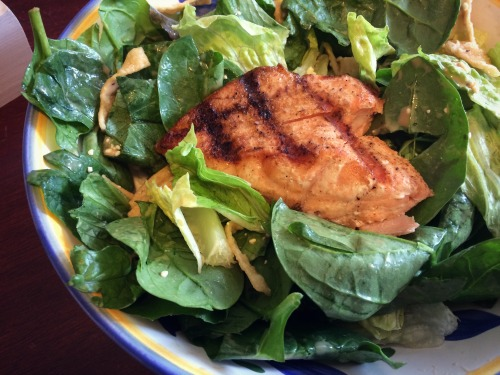 Seven Days of Salad Salmon