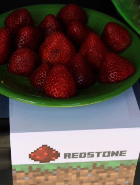 Minecraft Birthday Party Redstone