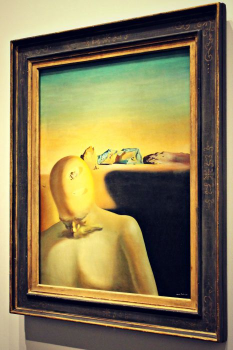 The Dali Museum Art