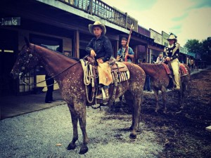 Old West Festival Horses