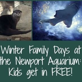 Winter Family Days at the Newport Aquarium: Free Admission for Kids!
