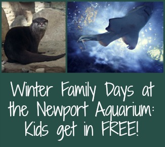 Winter family days at the newport aquarium free admission Aquarium free days