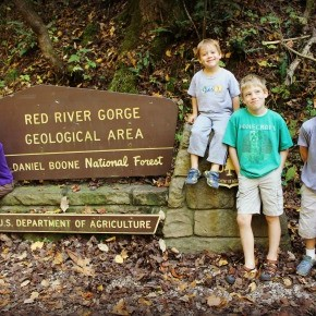 Red River Gorge {Fall 2015}