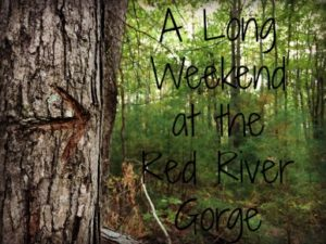 a-long-weekend-at-the-red-river-gorge