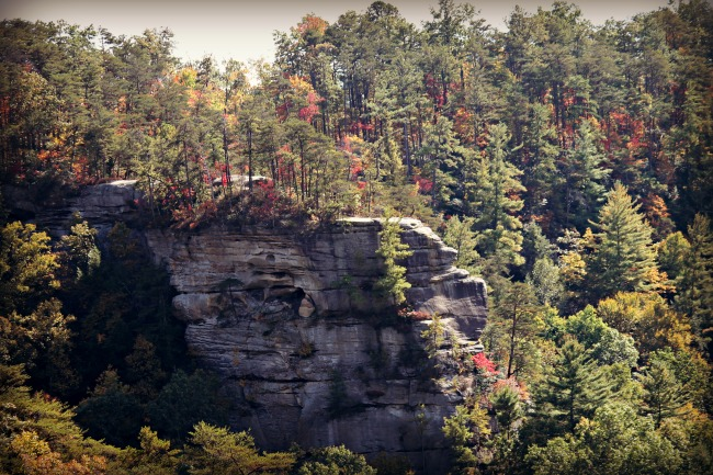 red-river-gorge-scenery