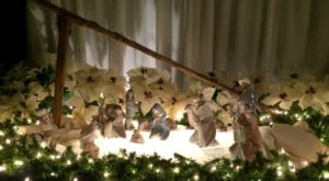a-franciscan-christmas-nativity