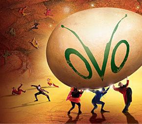 Cirque du Soleil presents OVO!