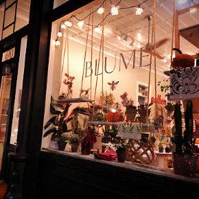 Blume Floral Studio